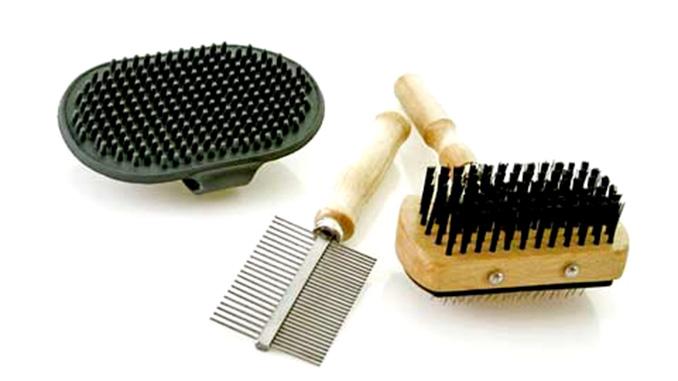 Инструменты для ухода за шерстью у собак
