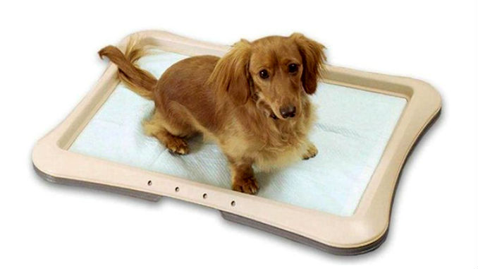 Лоток для собаки под пеленку фото