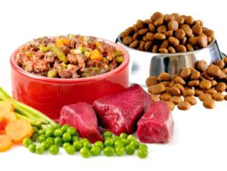 Cухой корм или натуральный для собак
