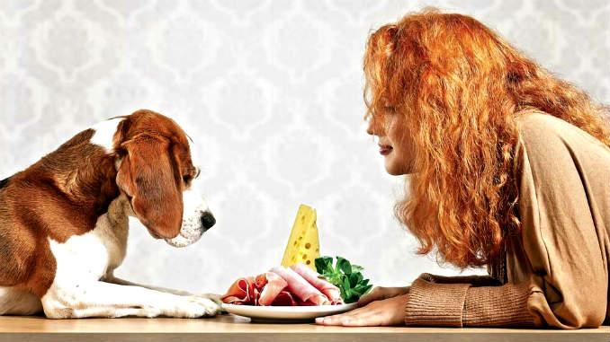 Натуральное кормление для собак
