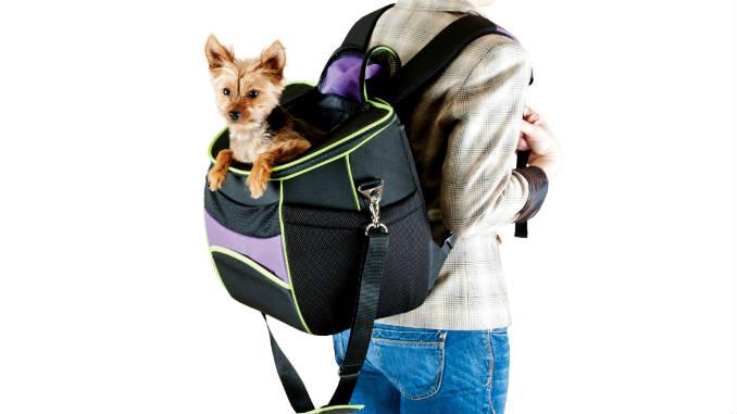 Рюкзак-переноска для собаки фото