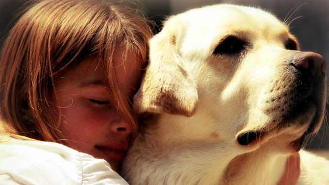 Собака для ребенка