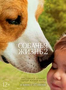 Собачья-жизнь2
