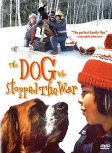 26-Собака,-остановившая-войну