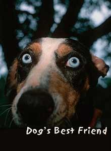 Лучший друг собак фильм