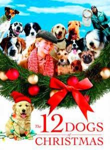 72-12-рождественских-собак