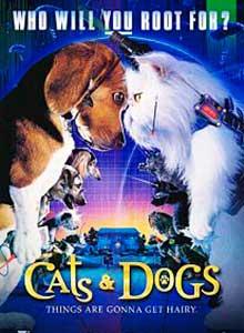 74-Кошки-против-собак