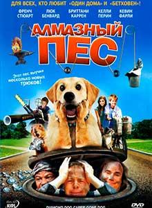 97-Алмазный-пес